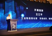 王江平出席第37届全国医药工业信息年会
