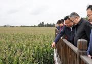 国机集团领导率队吉林调研纪实