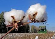 中国纺织工业联合会重要声明