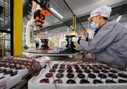 河北唐山:打造高新技术产业集群 助推区域经济高质量发展
