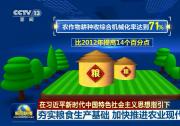 【在习近平新时代中国特色社会主义思想指引下】夯实粮食生产基础 加快推进农业现代化