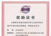 中国科学院力学研究所等共同申报的项目荣获中国石油和化工自动化行业科技进步二等奖