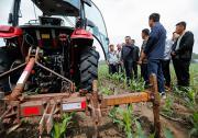 国务院常务会议决定针对今年以来农资价格较快上涨对实际种粮农民一次性发放补贴