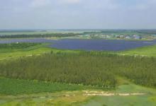 吉林:绿能涌动助振兴