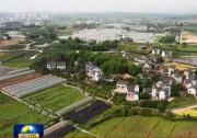 习近平:农业农村工作,说一千、道一万,增加农民收入是关键