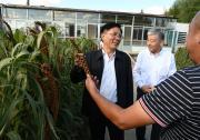 生态环境部党组书记孙金龙赴辽宁调研生态环境保护工作