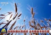 多国加快农业数字化转型