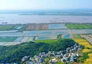 生态优先绿色发展,彭泽县推动农业园区化,助力虾蟹产业出圈