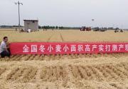 我国大规模麦收基本结束 机收率96%创新高