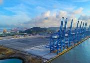 世界自动化装卸效率最高的集装箱码头通过竣工验收